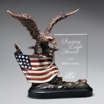 Bronze Antique Resin Cast Eagle with Flag and Beveled Glass Patriotic Awards