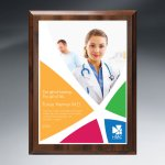 Choice of Digi-Color Plate on Economy Board Sales Awards