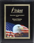 Ebony Piano Finish Plaque with Themed Florentine Plate Sales Awards
